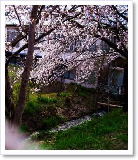 [frame20112266]image[1].jpg